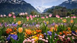 Interlaken hotels near Kursaal Congress Centre