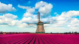 Find cheap flights from Dublin to Netherlands